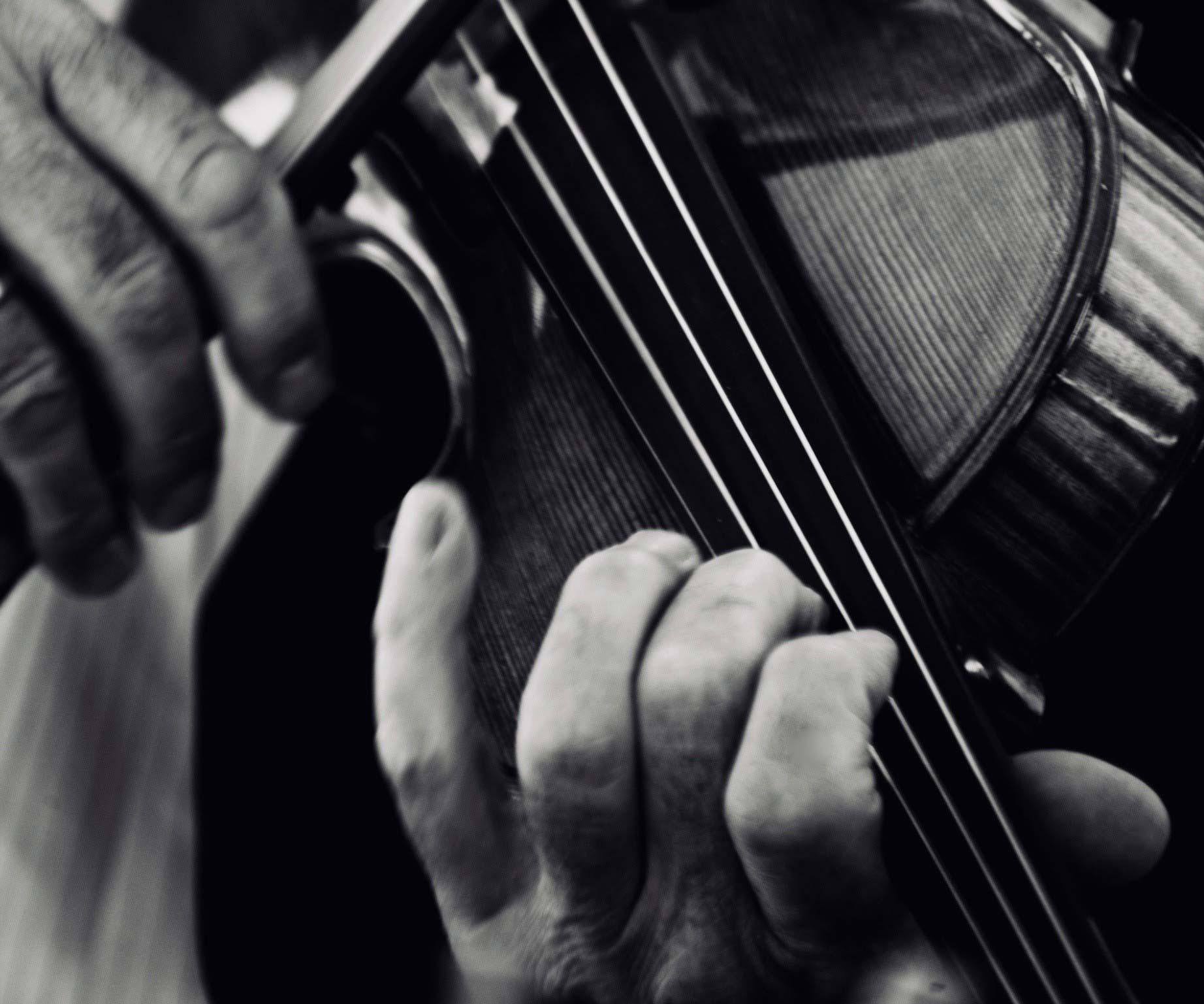 violin_adj